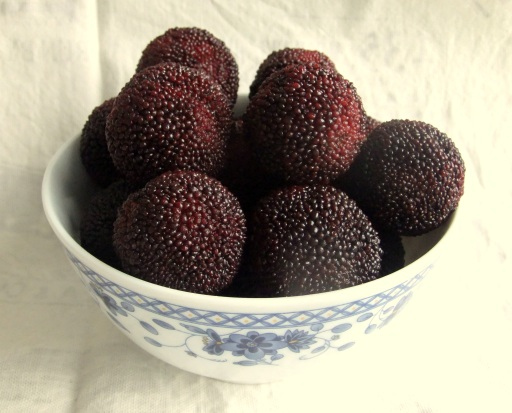 Yangmei fruit