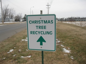 Christmas-Tree-Recyclingchristmas-tree-recycling