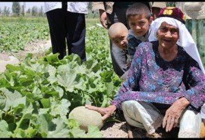 Ali Mihan 128 yr old watermelon farmer
