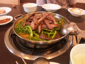 Gaegogi - Korean dog meat stew