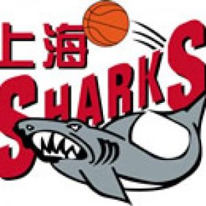 Shanghai sharks logo